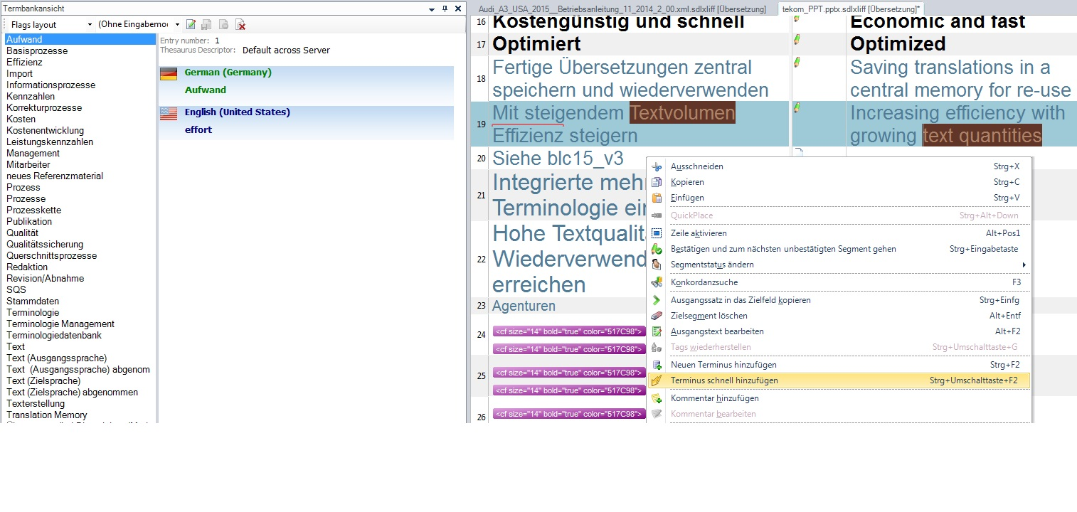 Screenshot SDL Trados Studio 2014: Faster term integration in Trados Studio 2014 SP 2